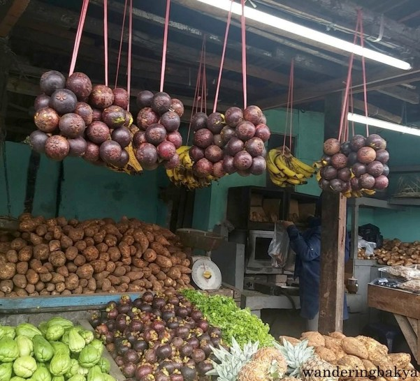 Fruits and vegetables found along the highway from Gunung Mas to Jakarta