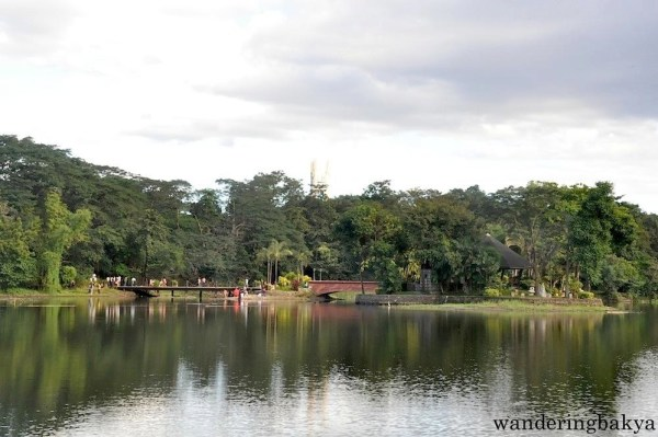 Part of the lagoon of Ninoy Aquino Parks and Wildlife Center