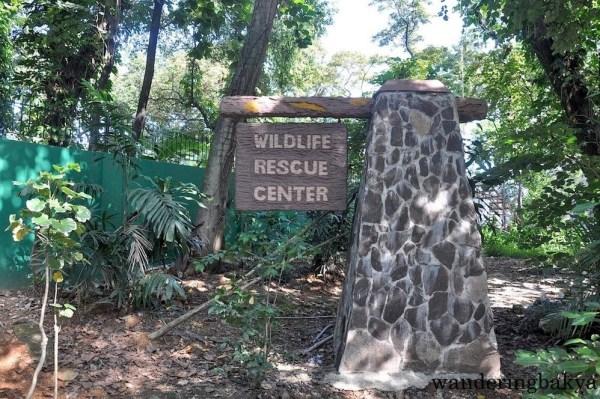 Wildlife Rescue Center of Ninoy Aquino Parks and Wildlife Center