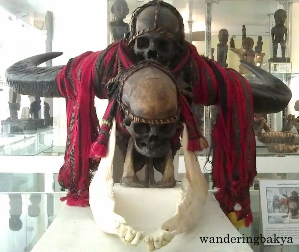 Grand Carabao Horn with Two Skulls