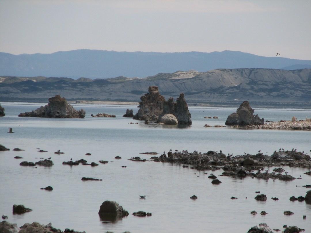 The Mysterious Mono Lake