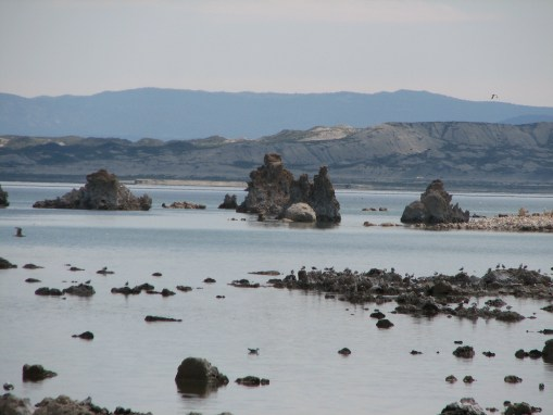 The Mysterious Mono Lake