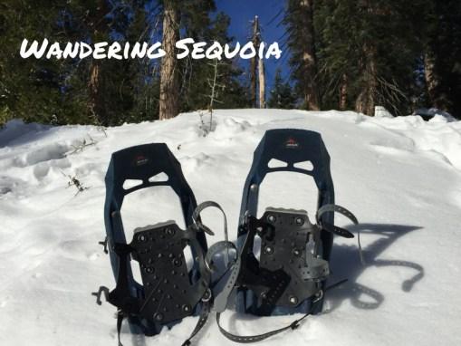 5 Wintertime Tips for Wandering Sequoia