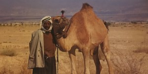man-with-camel