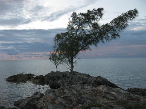 An outcrop on the water at Cambridge Beaches Resort Bermuda