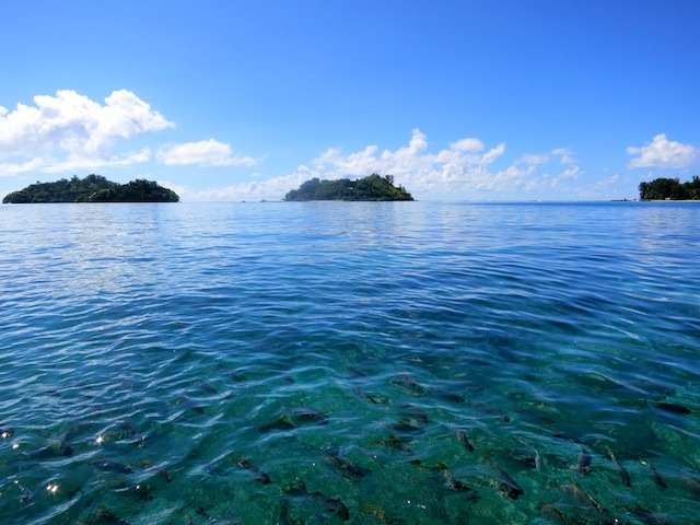 Seychelles islands from the water