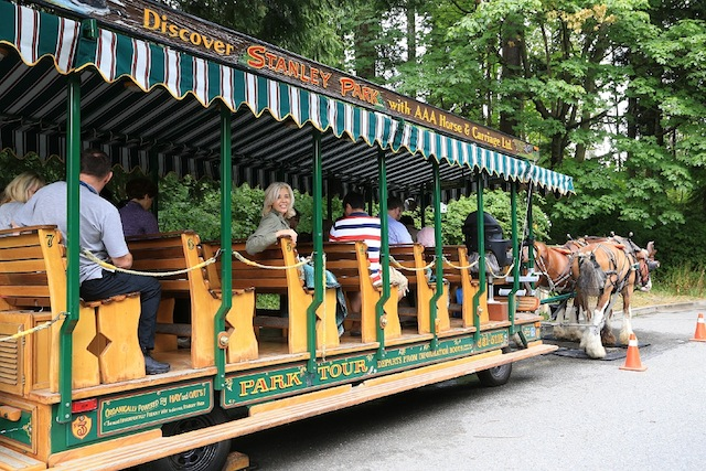 Wandering Carol in Vancouver's Stanley Park carriage ride
