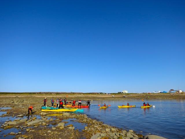 Beluga adventure in the Churchill River