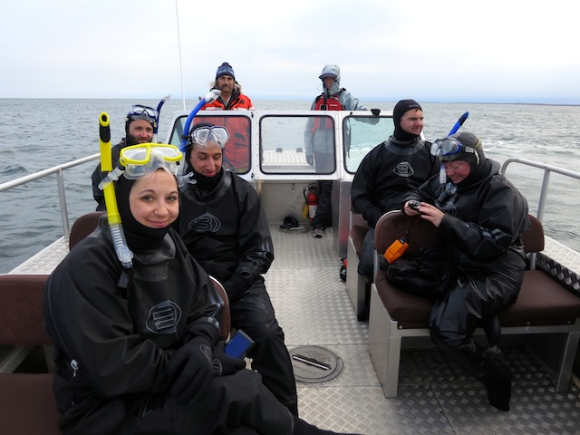 Snorkelers on the ultimate beluga adventure in Churchill