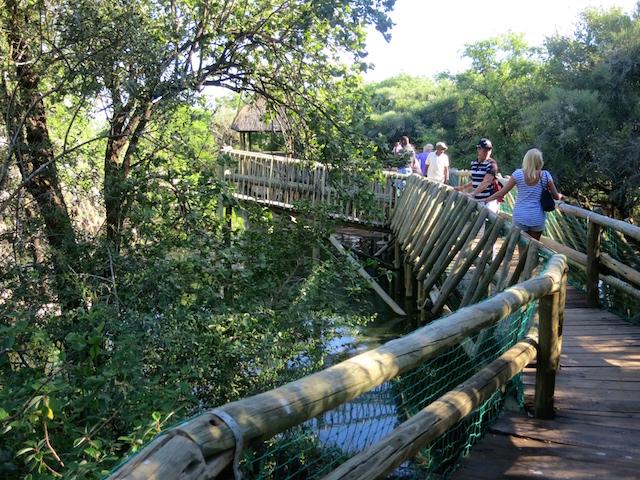 Golf pro at Sun City Kwena Crocodile Farm Nedbank Golf Challenge