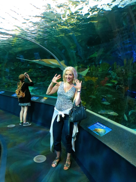 Luxury travel blogger, Wandering Carol at Ripley's Aquarium Toronto