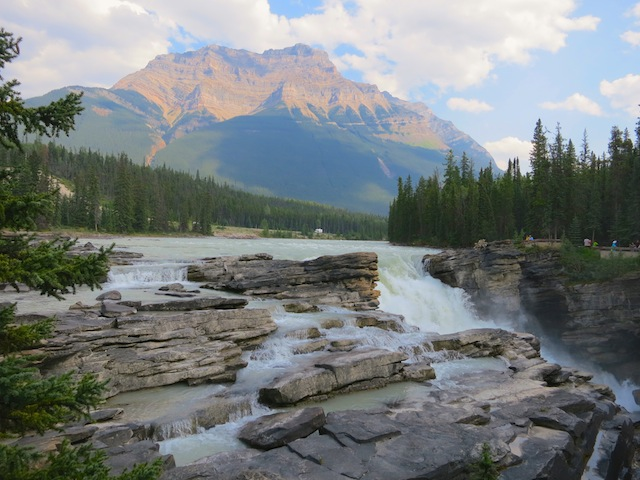 Icefields Parkway, Athabasca Falls Brewster Tour
