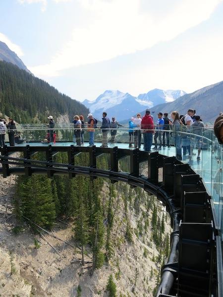 Icefields Parkway tour with Brewster, Glacier Skywalk glass