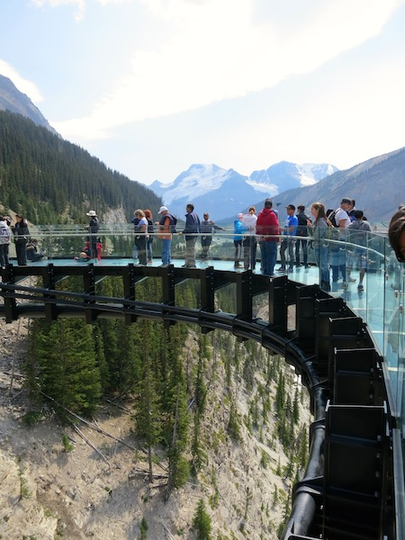 Icefields Parkway tour with Brewster, Glacier Skywalk glass