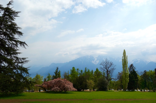 View from Chaplin Museum in Vevey
