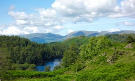 Things to do in the Lake District Tarn Hows