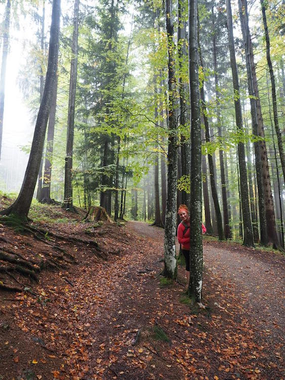 Day Trip from Munich Hiking Tegernsee