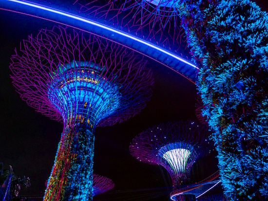 Supertrees-Singapore-Gardens-by-the-Bay Wandering Chocobo