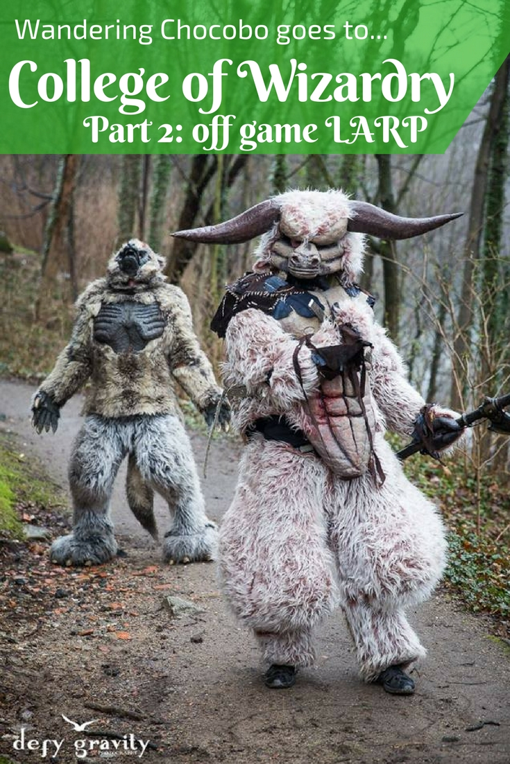 Ever wonder what it's like to live in a castle for four days and make believe you're a witch or wizard? Find out in part two of Wandering Chocobo goes to Czocha castle for College of Wizardry LARP.