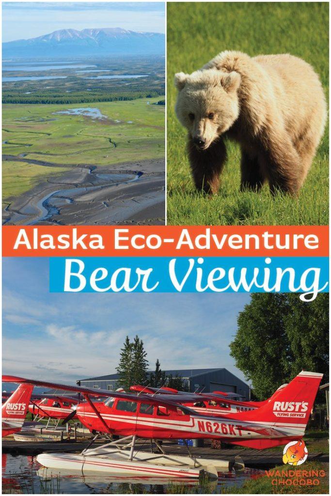 Alaska Brown Bear Viewing Tour