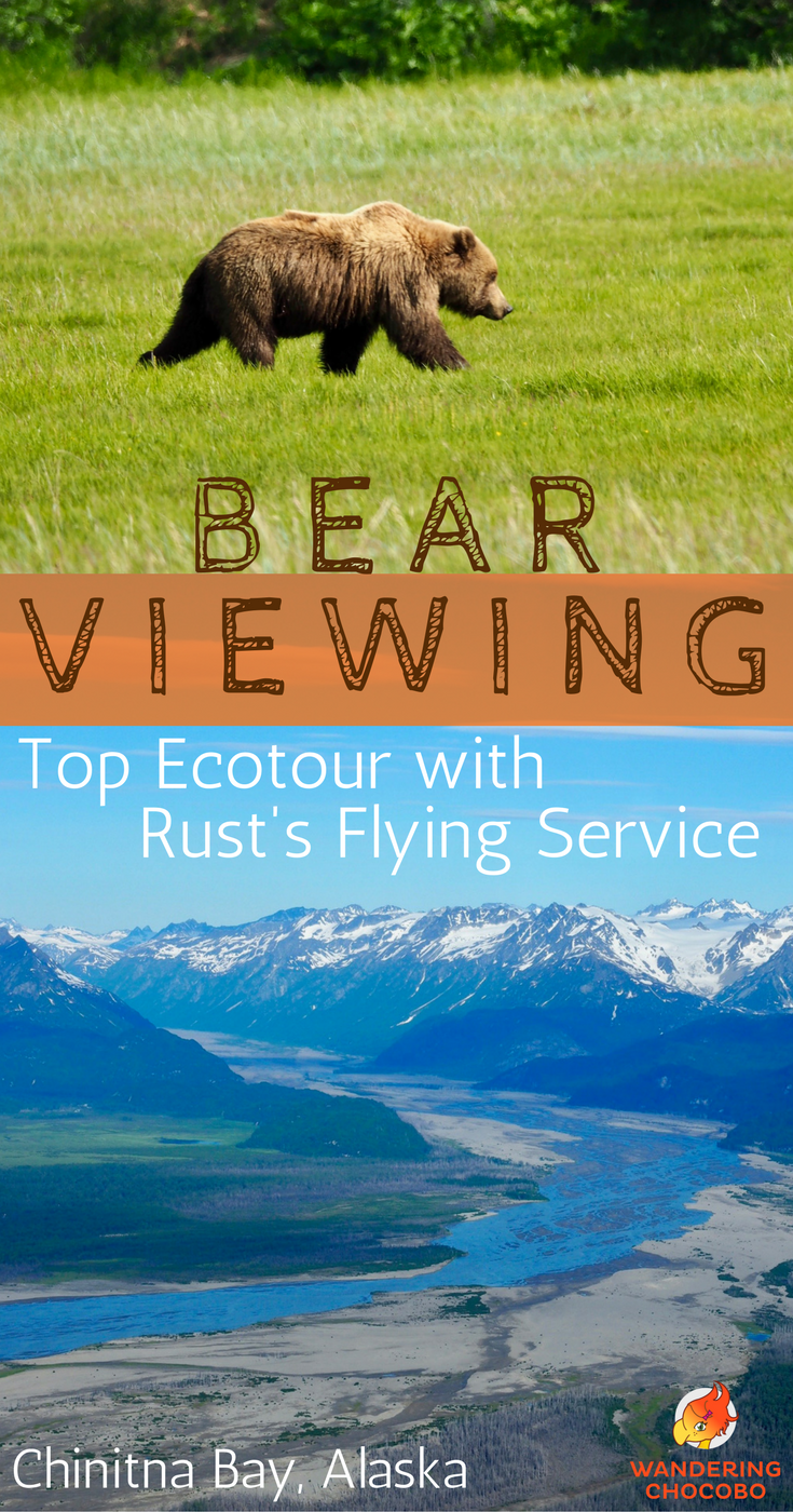 Experience this thrilling bear viewing wildlife eco-tour in Alaska. With a day trip from Anchorage this short scenic flight to Lake Clark National Park is one of the best sustainable eco tours in Alaska! See bears and wildlife in their natural outdoor habitat. Do not miss this post with lots of wildlife photography!