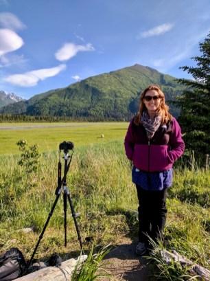 brown bear viewing near Anchorage