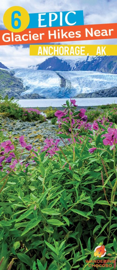 Glacier Hike Alaska Long Pin
