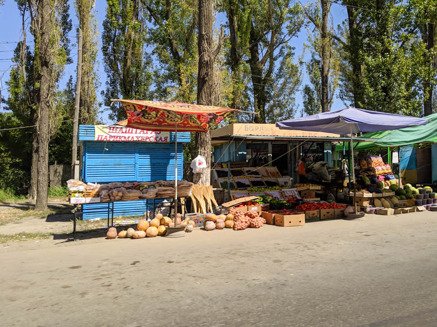 Vegan and Vegetarian survival Guide to Central Asia-40