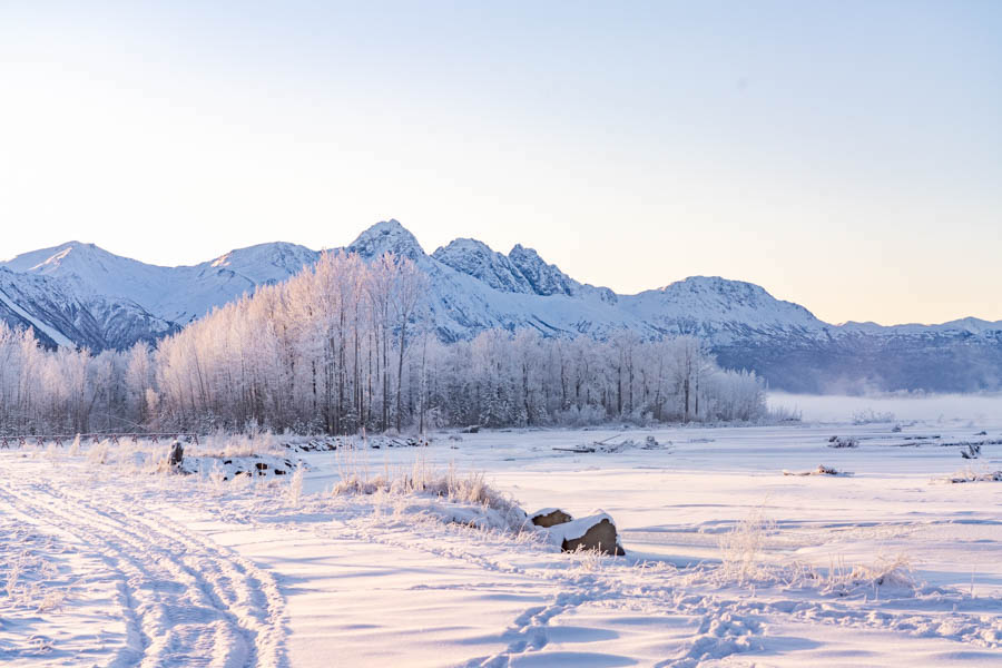 Alaskan Winter Landscape