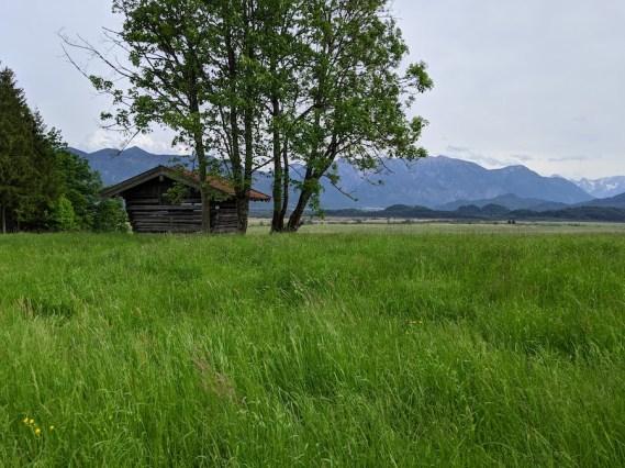 Murnauer Moos Marshland lookout