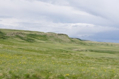 Head Smashed-In Buffalo Jump from the field below