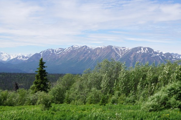 Along the Haines Highway to Haines Junction