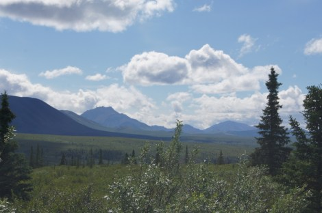 We could see Mt. McKinley with binoculars. One of the peaks is just above the clouds in the middle of this picture