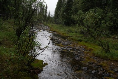 The stream runs along the edge of the campground