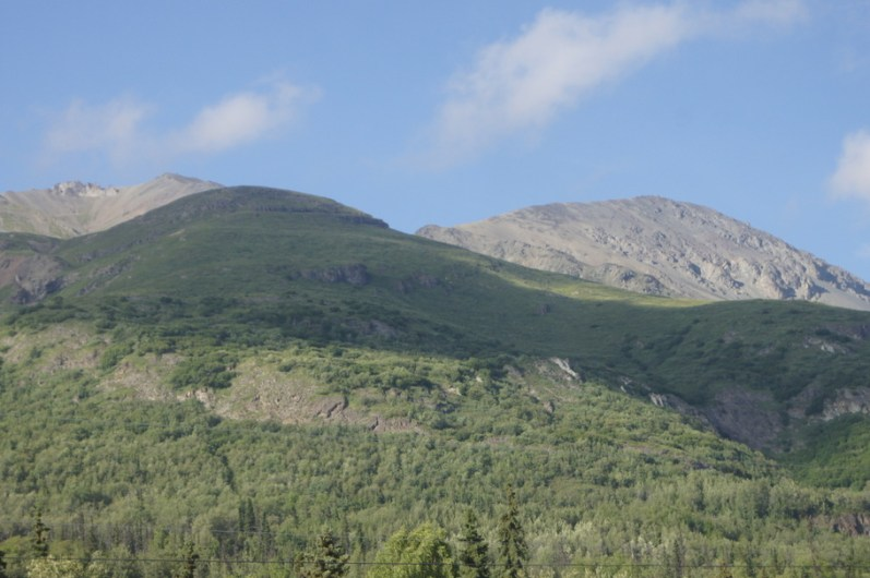 View out the back window of Dall Sheep on the mountain