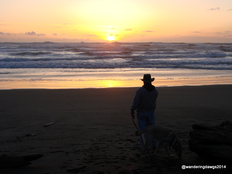 Henry enjoying a beautiful sunset at Cape Disappointment
