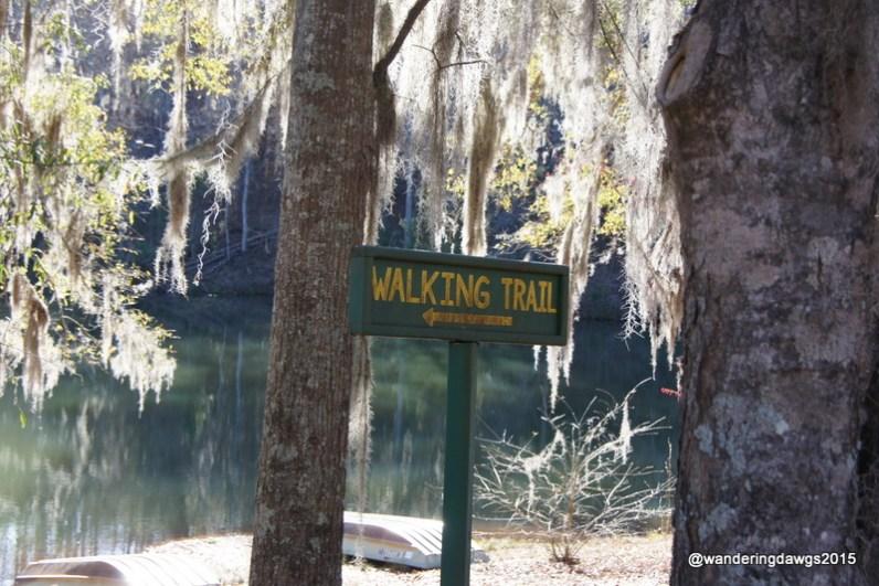 Taking a walk beside the lake at Sherling Lake Park