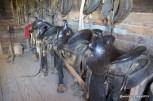 Saddles at the LBJ Ranch
