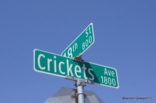 Crickets Avenue in downtown Lubbock