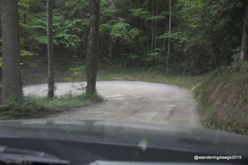 Hairpin Turn Cove Creek Road