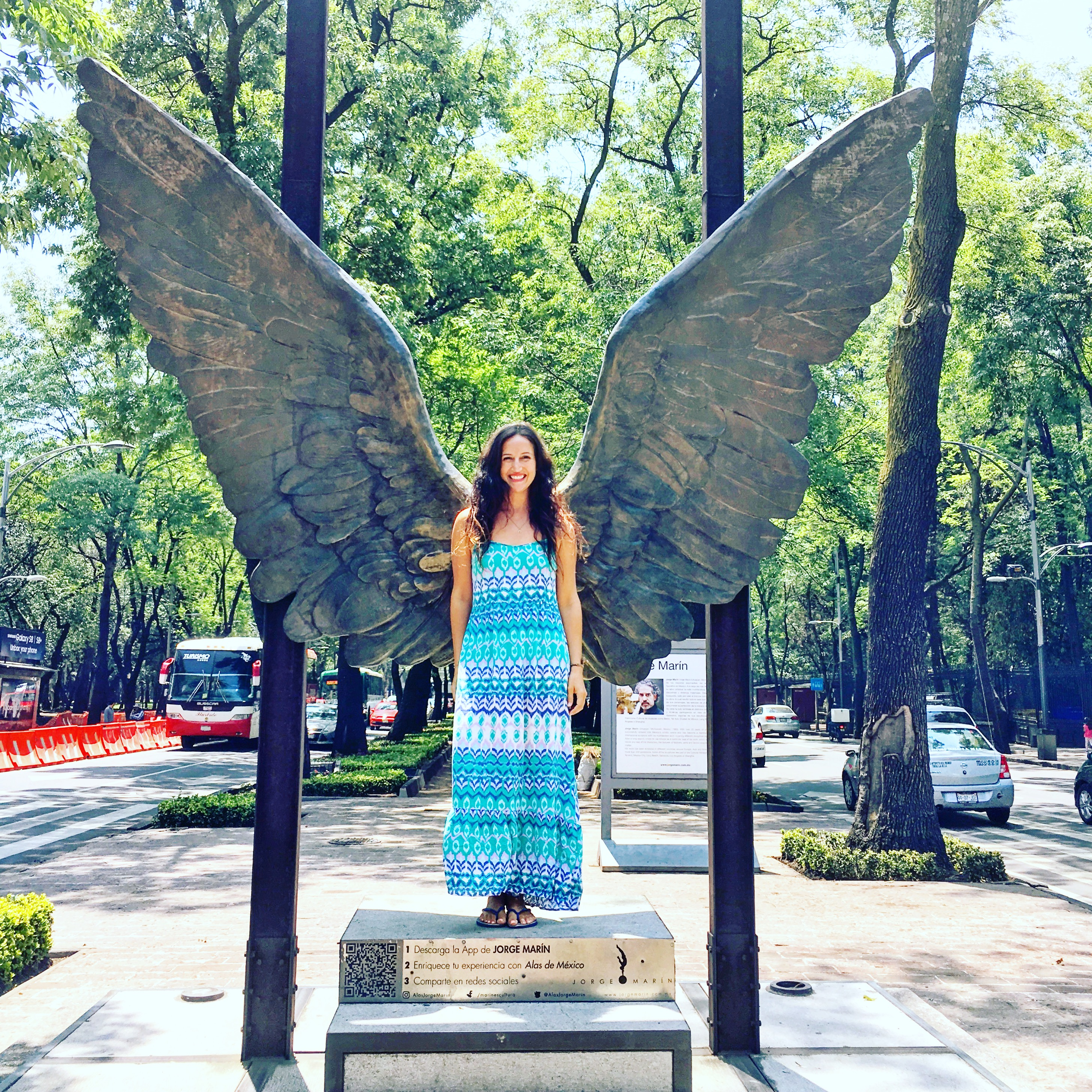 Mexico City angel wings