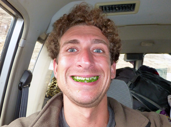Chewing Qat in Yemen 3