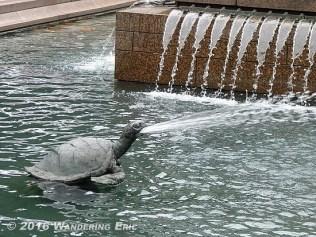 20110302_exorcist-turtle