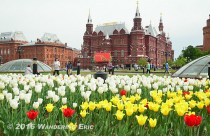 20140510_state-museum-of-historgy