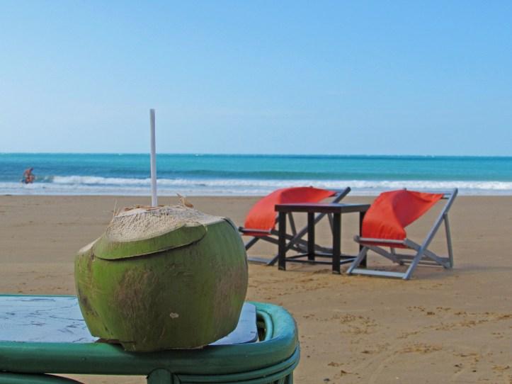 Coconut on Con Son beach