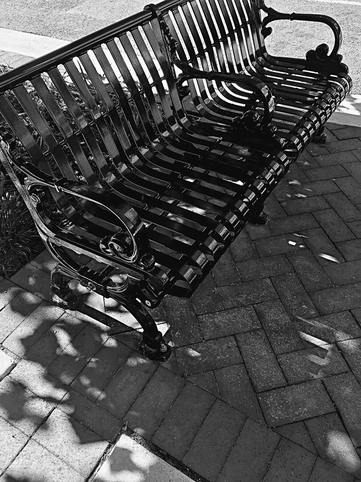 Bench photo in black and white