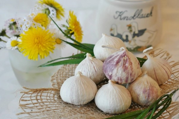 freshly grown garlic sitting on the table with wildflowers, just one way to make money homesteading