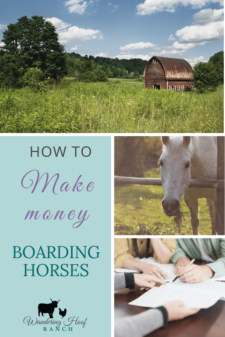 How to start a horse boarding business, one way to make money and a profitable side hustle for your homestead or hobby farm. Plus free checklist & contract