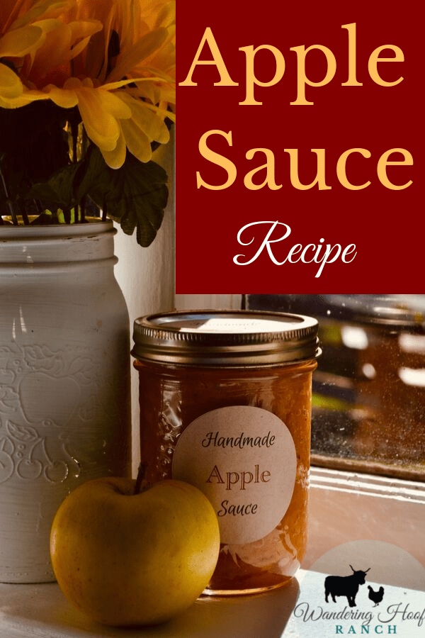 This Apple Sauce recipe is a quick and easy option for canning apples in bulk, When apple season is at its peak. A great grab and go snack for the babies and the kids lunches. A cheap and healthy pantry staple, this  no sugar apple sauce recipe is a must for your family!