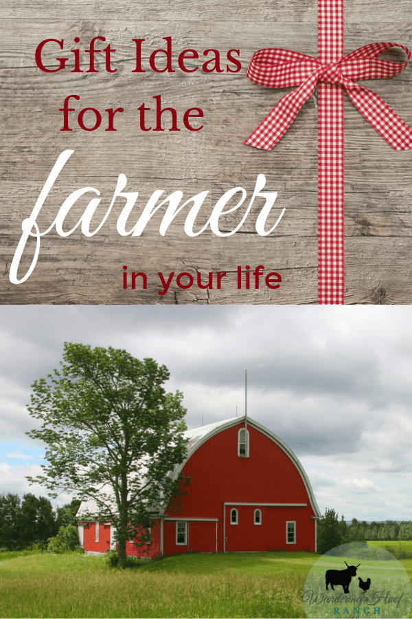 When it comes to buying for a farmer, these gifts tend to be tricky as I've found they usually already have everything they NEED. I share with you great gift ideas for what that really want.